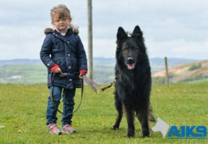 A1K9 Family Protection Dog with child