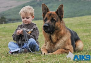A1K9 family protection childs friend Q3