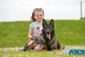 a1k9 family protection dogs 2