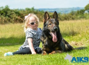 a1k9 family protection dogs 4