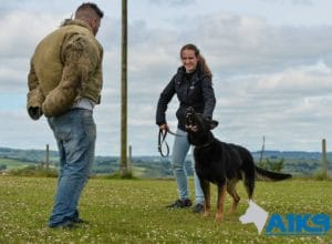 a1k9 family protection dogs 5
