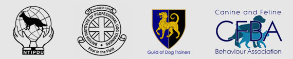 A1K9 Accreditations Professional Dog Trainers