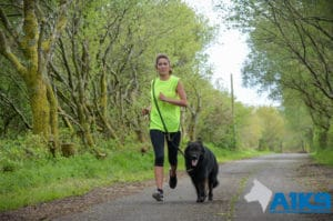A1K9 Protection Dog Running With Client