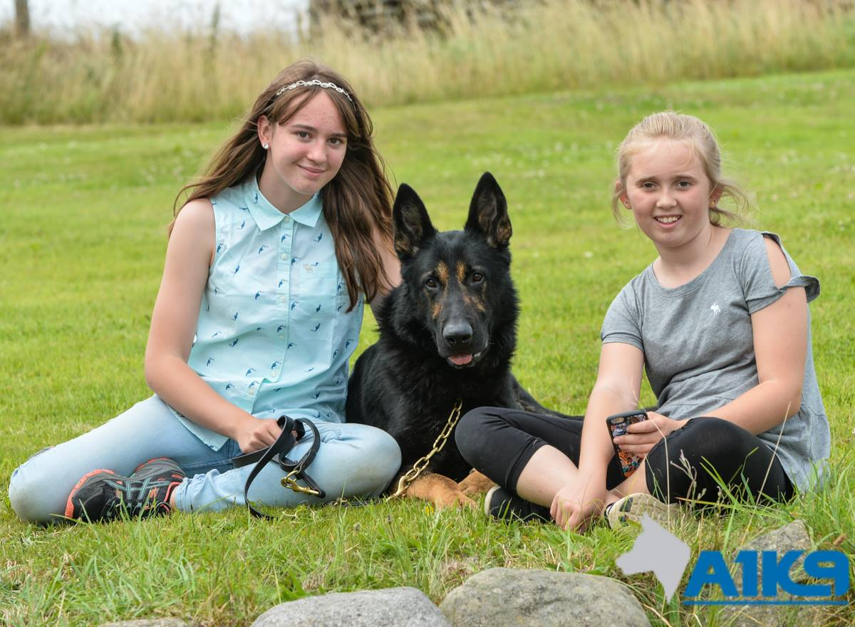 Two Giels and A1K9 GSD