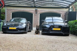a1k9 Dog in between audi and porsche